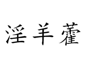 Yinyanghuo
