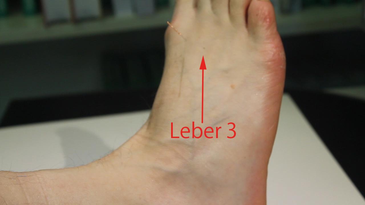 Akupunkturpunkte des Funktionskreises Leber