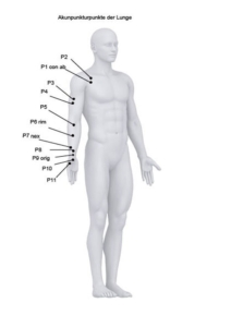 Lunge akupunkturpunkte