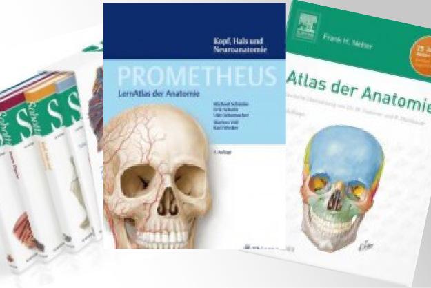 Die besten Anatomiebücher und Atlanten zur Osteopathie-Ausbildung